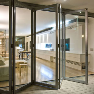 Puerta en aluminio 20